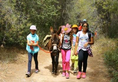 Donkey trekking 6