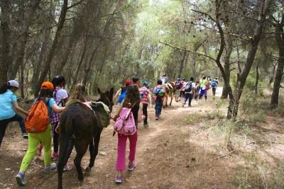 donkey trekking 5